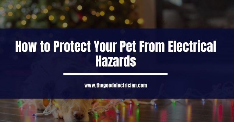 How to Protect Your Pet From Electrical Hazards